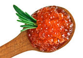 Red salmon caviar heap in wooden spoon with rosemary leaf — Stock Photo