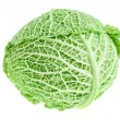 Fresh green cabbage head — Stock Photo