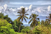 Beautiful tropical landscape — Stock Photo