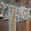 Wire fence — Stock Photo #4411809