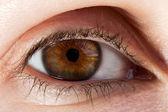 Human eye macro — Stock Photo