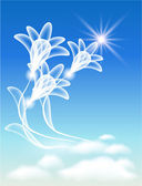 Transparent flowers in the clouds — Stock Vector