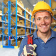 Portrait of handyman - Stockfoto