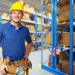 Handyman in warehouse — Stock Photo #4208722