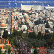 Kind on the city of Haifa — Stock Photo