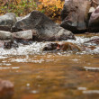 Pure clean water over rocks - Foto Stock