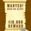 Poster Wanted dead or alive — Stock Vector #4946567