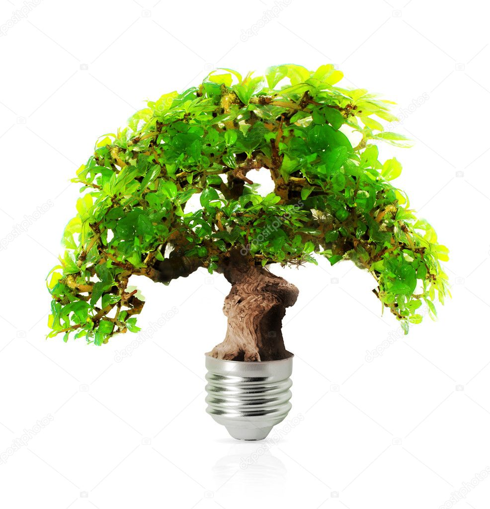Eco energy  Stock Photo #5250098