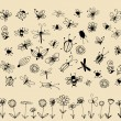 Insect sketch collection for your design - Stock Vector
