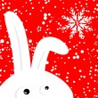 Funny rabbit on red christmas snowing background — Stock vektor