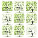 colección de arte de árbol para su diseño — Vector de stock  #4642945