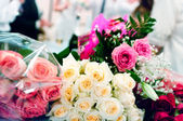 Beige and pink roses — Stock Photo