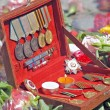 Stock Photo: Orders and medals