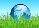 Glossy Earth Map Globe — Stock Photo