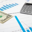 Financial charts and graphs — Stock Photo #5225429