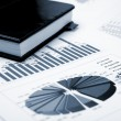 Financial charts and graphs — Stock Photo #5276356