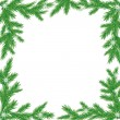 Vector de stock : Frame from branches of pine.