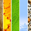 Nature banners — Stockfoto