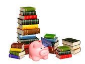 Eğitim için para — Stok fotoğraf