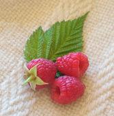 Raspberries on a textile. — Stock Photo