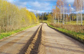 Country road. — Stock Photo