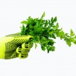 Bunch of parsley in the hand. — Stock Photo #5027833