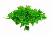 Bos van parslay. — Stockfoto