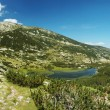 Panorama of Pirin National Park, bulgarian unesco heritage, moun — Stock Photo #3966886