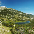 Panorama of Pirin National Park, bulgarian unesco heritage, moun — Stock Photo