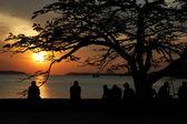 Zonsondergang op mariene station straat, cochi, kerala, india — Stockfoto