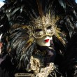 Man in bird costume at St. Mark's Square,Venice carnival - Stock Photo
