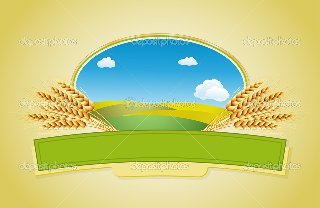 Package desing. Wheat flour or Pasta, macaroni, spaghetti. Vector illustration of ears of wheat, lable and landscape. — Stock Vector #4971067