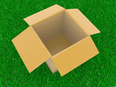 Open box on a grass — Stock Photo