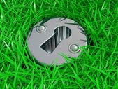 Schlüsselloch im grünen gras — Stockfoto