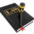 Legal gavel and law book — Stock Photo