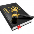 Royalty-Free Stock Photo: Legal gavel and law book