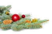 Christmas decoration — Стоковое фото
