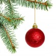 Christmas tree — Stock Photo #4353592