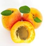 Apricots — Stock Photo #4750348