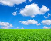 Campo y las nubes — Foto de Stock
