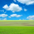 Field and white clouds — Stock Photo #5281930