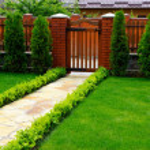 Garden — Stock Photo #5367001
