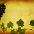 Wine label background — Foto de stock #4033110