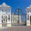 Stock Photo: Gates of Presidential Palace