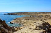 Red Sea coast — Stock Photo
