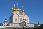 Catedral de iver — Foto Stock