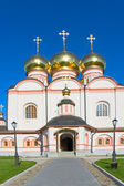 Catedral de iver — Foto de Stock