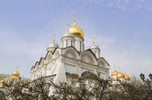 Gold domes of an orthodox cathedral — Stock Photo