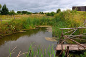 Small pond in the village — Stock Photo