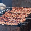 Juicy slices of meat with sauce prepare on fire (shish kebab). — Stock Photo